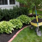 Bahçe Düzenleme İpuçları