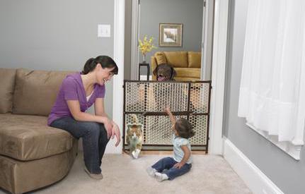 Bebeğiniz ve evdeeki evcil hayvanlar, evde hayvan beslemek