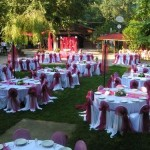 Düğün organizasyonu , masa sandalye süsleme , düğün mekan