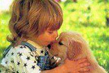 Duygusal Zeka İle Evcil Hayvan İlişkileri
