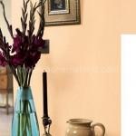 Fil Dişi Duvar Boyası Rengi