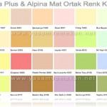 Filli boya silikonlu alpina renk karteli — Resimli Yemek