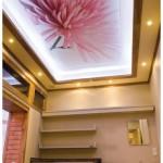 Renkli tavan dekorları ve tavan modelleri