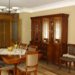 Salon ve çalışma odaları için mobilya takımları dekorasyonları