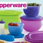 Tupperware ürünleri, Katalog ve Şikayet, Tupper sağlıklı mı