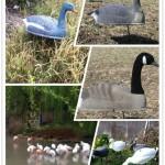 yeni bir çift tropikal flamingolar açık heykeller bahçe