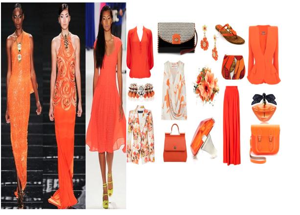 2013 Moda Renkleri: