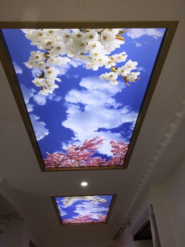 Albayrak Gergi Tavan,gergi tavan fiyatları,gergi tavan m2