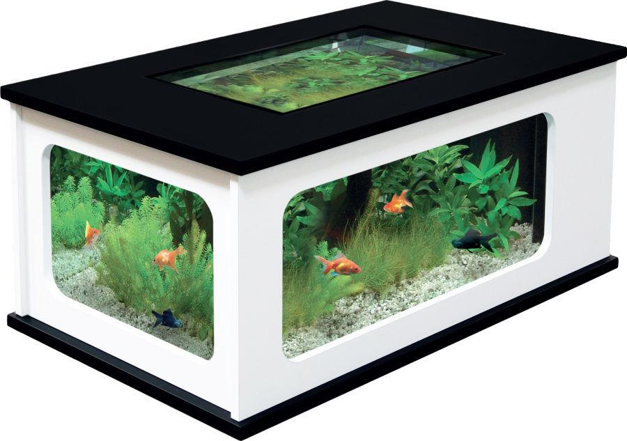 dekoratif akvaryum modelleri