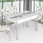 Tekzen Mutfak Masa Ve Sandalye Modelleri