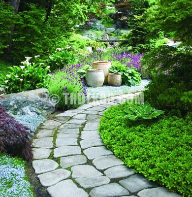 Değişik Bahçe Dizaynı Örnekleri