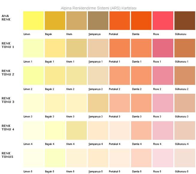 Filli boya renk kataloğu ve bej rengi