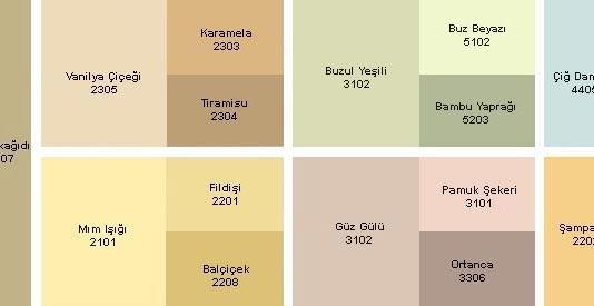 Açık kum beji rengi ve Dyo kataloğu