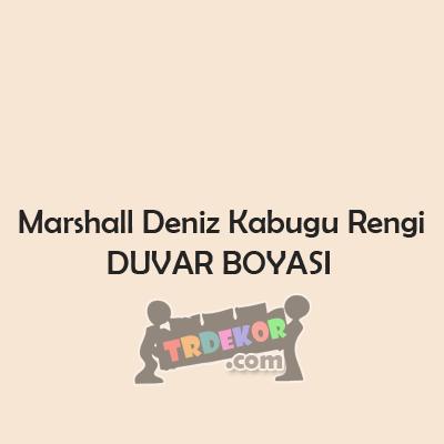 Marshall Deniz Kabuğu Duvar Boyası Rengi! | Dekorasyon ...
