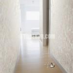 Simli Duvar Boyası Nasıl Yapılır? ( Simli Duvarlar