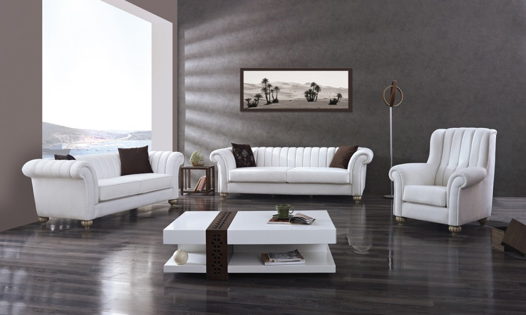 Modern Salon Takımları mobilya