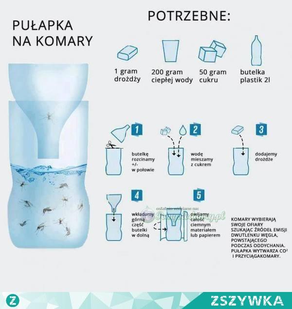 Pet Şişeden Sivrisinek Tuzağı Yapılışı | Kendin Yap