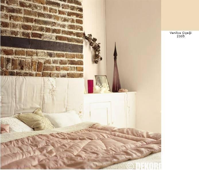 Vanilya Çiçeği Rengi Duvar Boyası | Dekorasyon Fikirleri ve ...