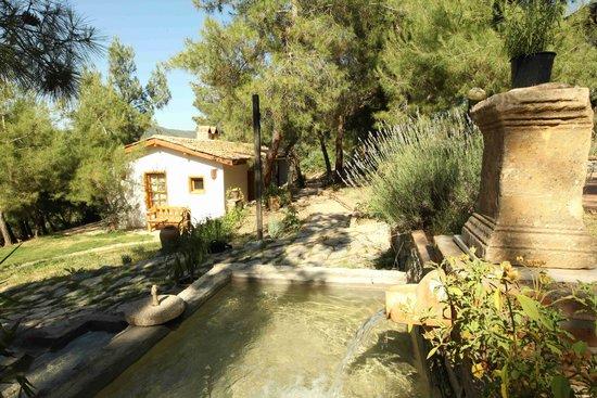 kır evleri - Kayserkaya Dağ Evleri, Şirince Resmi - TripAdvisor